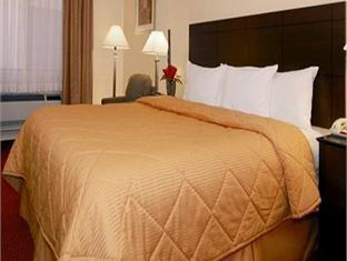 Best PayPal Hotel in ➦ Rio Rancho (NM): Comfort Inn Rio Rancho