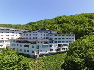 Hotel Higashidate image