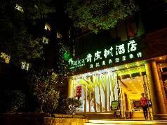 Vatica Beijing East Gate of Temple of Heaven Longtan Park Fangzhuang Metro Station Hotel, Beijing