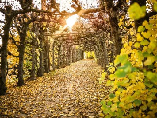 Best guest rating in Staatsbad Bruckenau ➦  takes PayPal