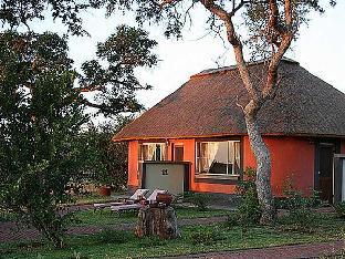 Get Coupons Mohlabetsi Safari Lodge