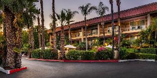 Reviews Hotel Pepper Tree Boutique Kitchen Studios Anaheim