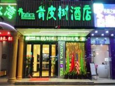 Vatica Shenzhen Longhua Qinghu Metro Station Hotel, Shenzhen