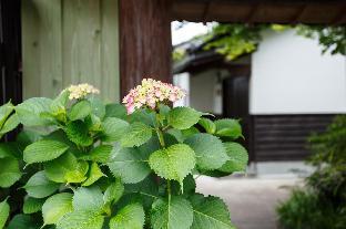료칸 고토노카신 image
