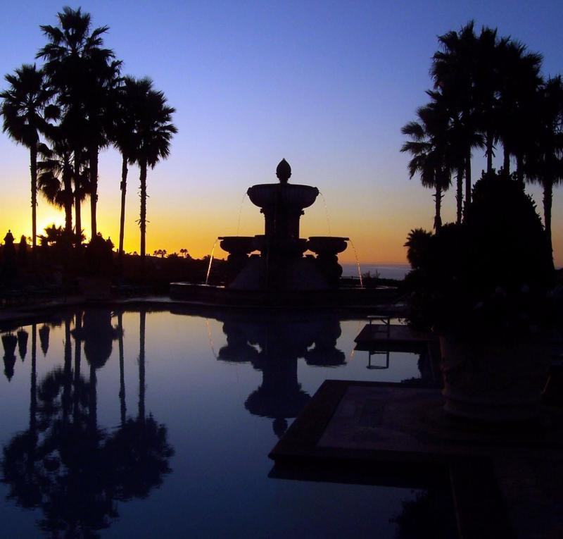 Dignitary Discretion Newport Beach