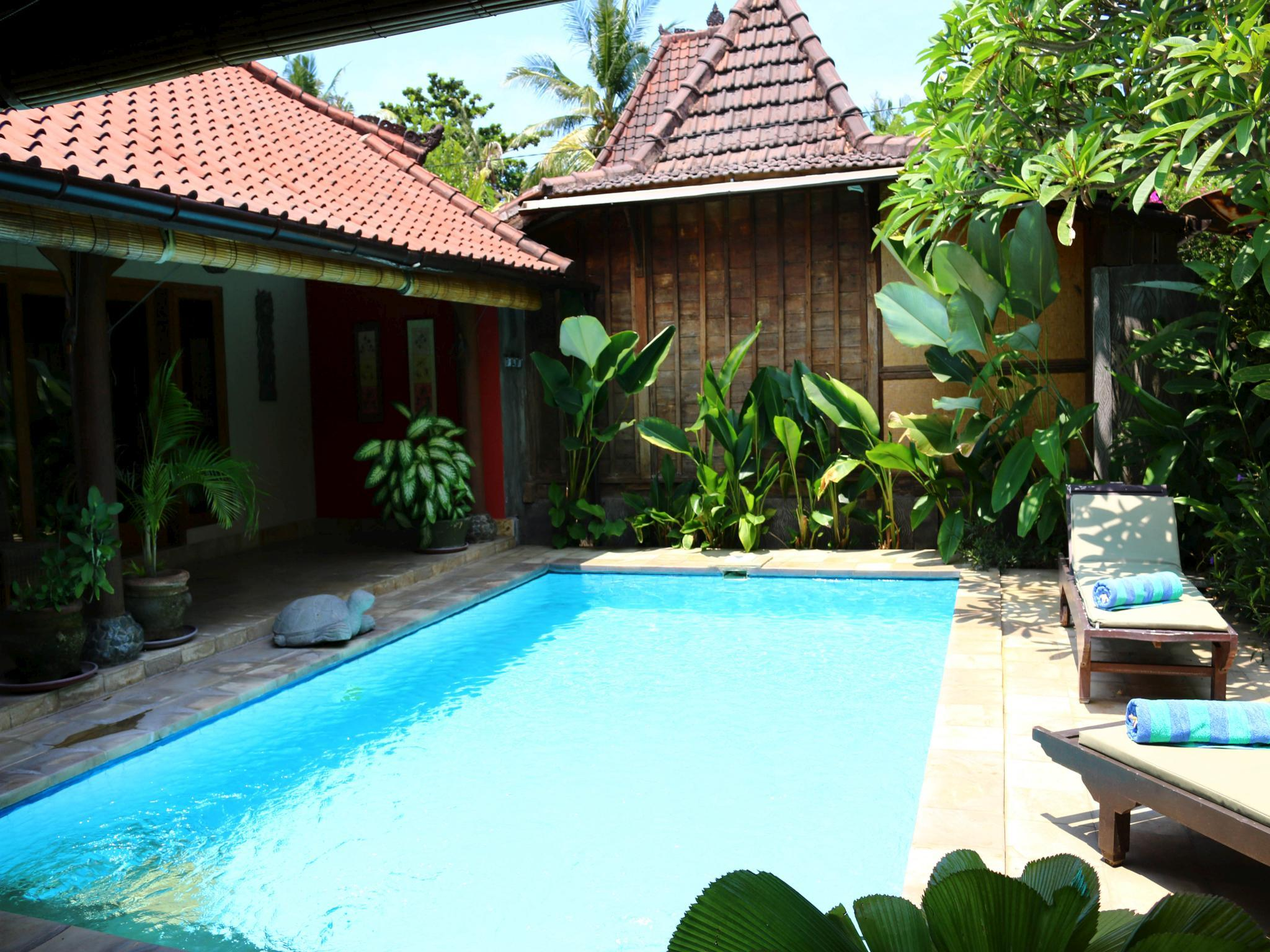Villa Penyu 2 bed pool at Lovina Beachhouse Villas