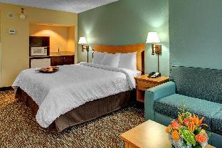 booking Miami (FL) Hampton Inn and Suites Miami Airport South hotel