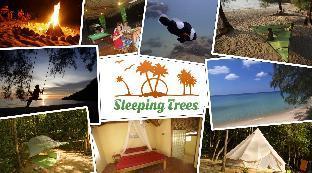 Sleeping Trees
