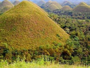 Charts Resort & Art Cafe Bohol - Surroundings - Chocolate Hills