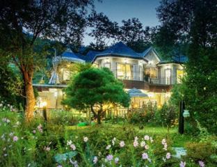 Ivy House - VIP