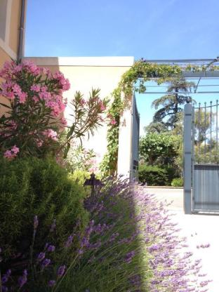 Residence Suite Home Apt Luberon
