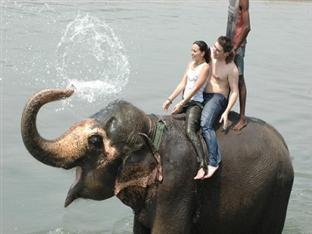 Rhino Lodge & Hotel Chitwan - Elephant Bathing