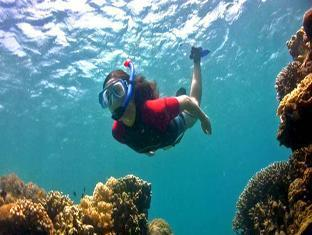 Ravenala Resort Cebu - Recreational Activity - Snorkeling
