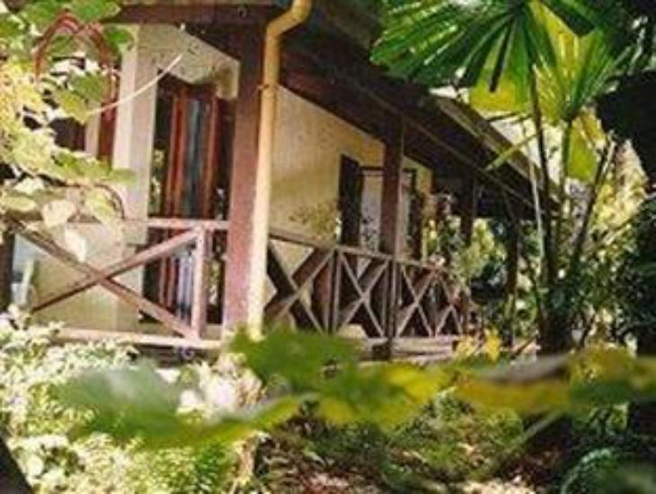 Daintree Deep Forest Lodge photo 3