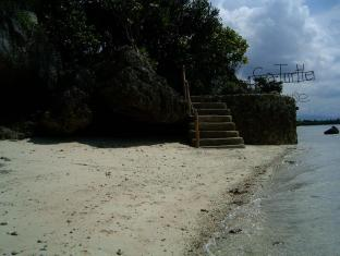 Sea Turtle House Cebu - Strand