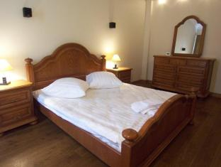 Intermark Serviced Apartments at Belorusskaya Moscow - Guest Room