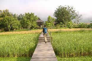 Rai Saeng Arun Resort PayPal Hotel Chiang Khong (Chiang Rai)