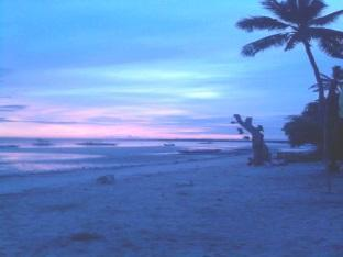 Muro Ami Beach Resort Panglao Island - View