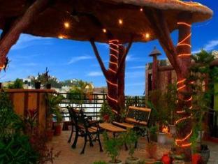 India Luxury Homes New Delhi and NCR - Balcony/Terrace