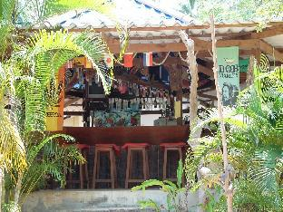 Logo/Picture:Jungle Bar & Bungalow