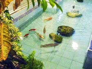 booking Hat Yai Hatyai Greenview Hotel hotel