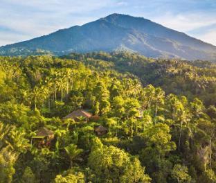 サリンブアナ エコ ロッジ Sarinbuana Eco Lodge - ホテル情報/マップ/コメント/空室検索
