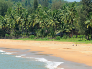 Coastal Jewel of Goa North Goa - Rodyti