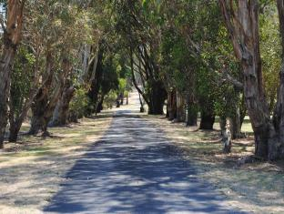 Clarendon Chalets Mount Gambier - The Entrance Driveway leading to the Chalets
