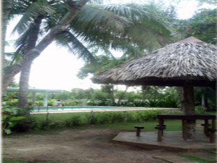 Casa Nova Garden Apartments Bohol - View