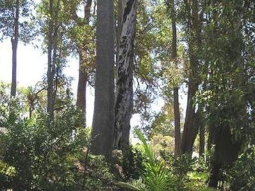 Best guest rating in Nannup ➦ Holberry House takes PayPal
