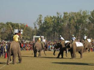 Chitwan Adventure Resort Chitwan - Elephant Football