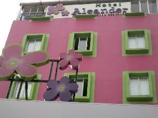 Hotel Aleander