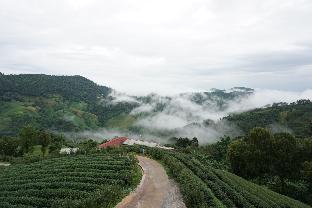 Mae Salong (Chiang Rai)