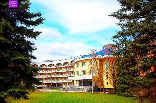 Park-Hotel Vozdvizhenskoe