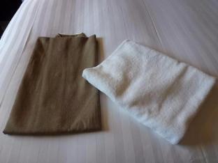 鹿儿岛索拉瑞亚西铁酒店 image