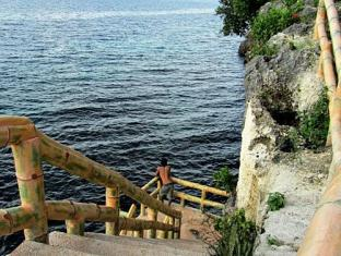 Alexis Cliff Dive Resort Bohol - View