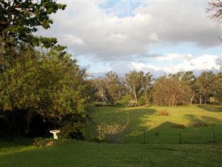 Amphitheatre Hotel B&B Avoca (VIC) - View from the patio