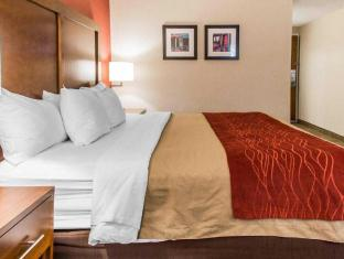 Comfort Inn Boston Hotel