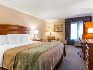 Interior Comfort Inn Anaheim Resort