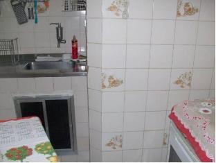 Domingos Ferreira Apartment Rio De Janeiro - Keittiö
