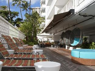 Aqua Oasis Hotel4