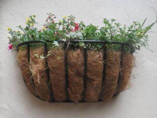 The Old Gallery and Chamber Apartments York - Garden