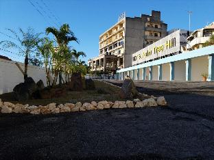 Palm tree hill image