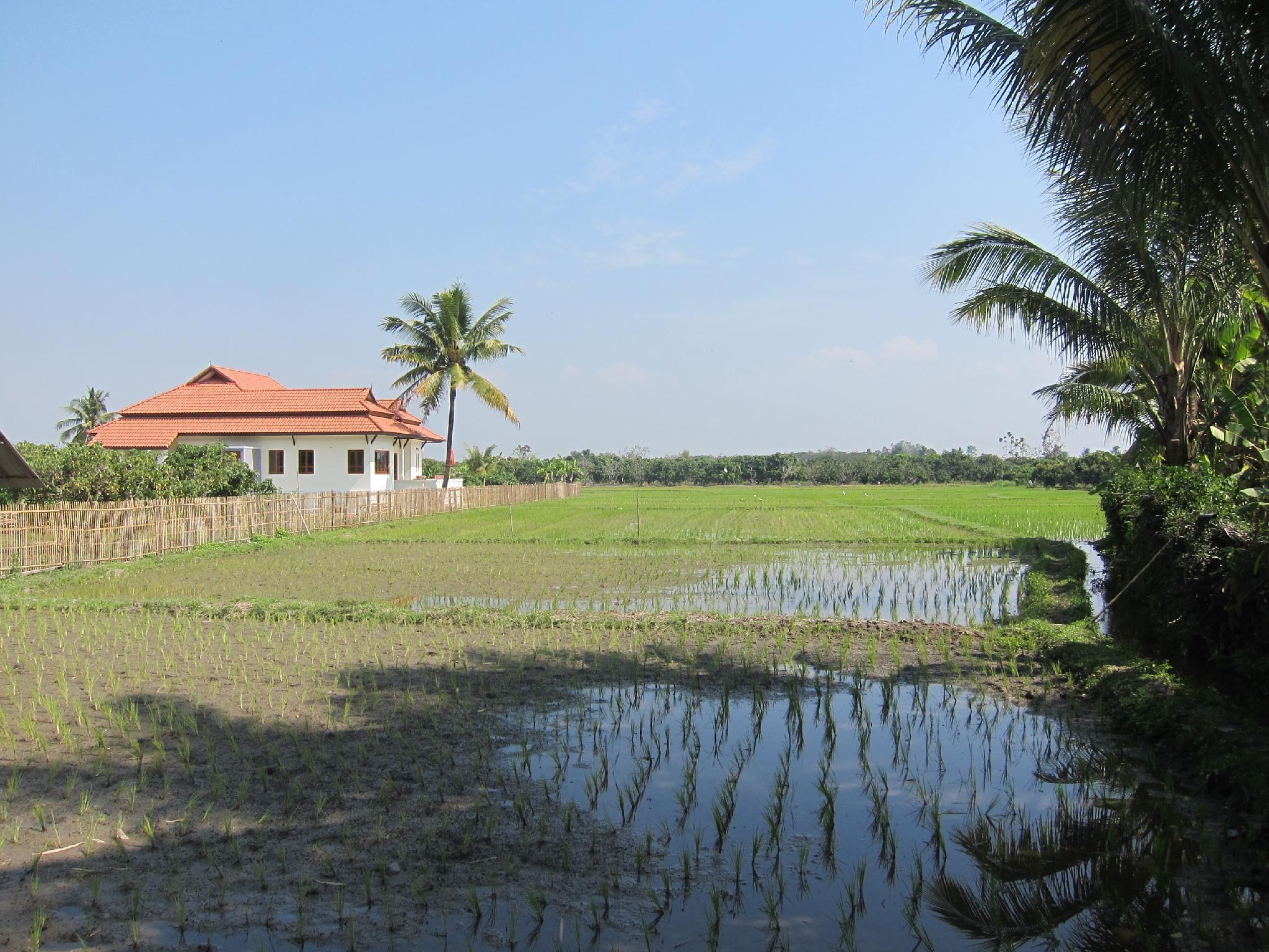 ,Resort Chiang Sawan
