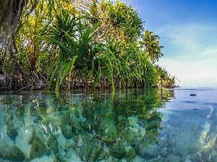Himandhoo Inn PayPal Hotel Maldives Islands