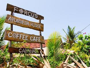 Forcus Cabanas Guest House