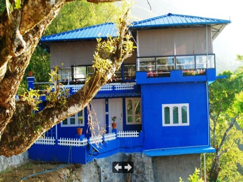 Hollyhock Resorts - Munnar
