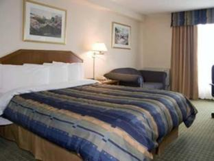 Quality Hotel & Suites Toronto Airport East Toronto (ON) - Guest Room