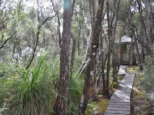 Southwest Wilderness Camp Tasmania