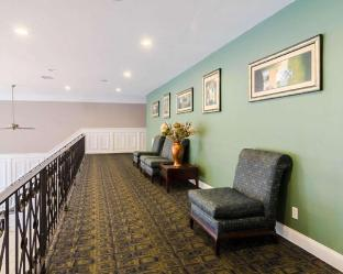 room of Quality Inn and Suites Williamsburg Central